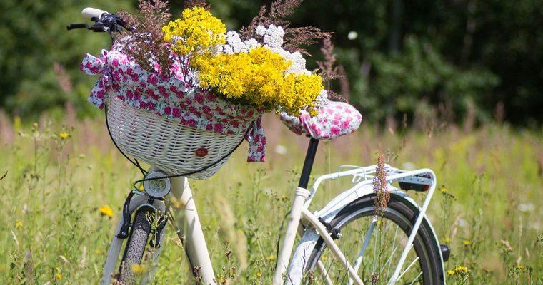 Hof-Genuss-Radtour nach Olching